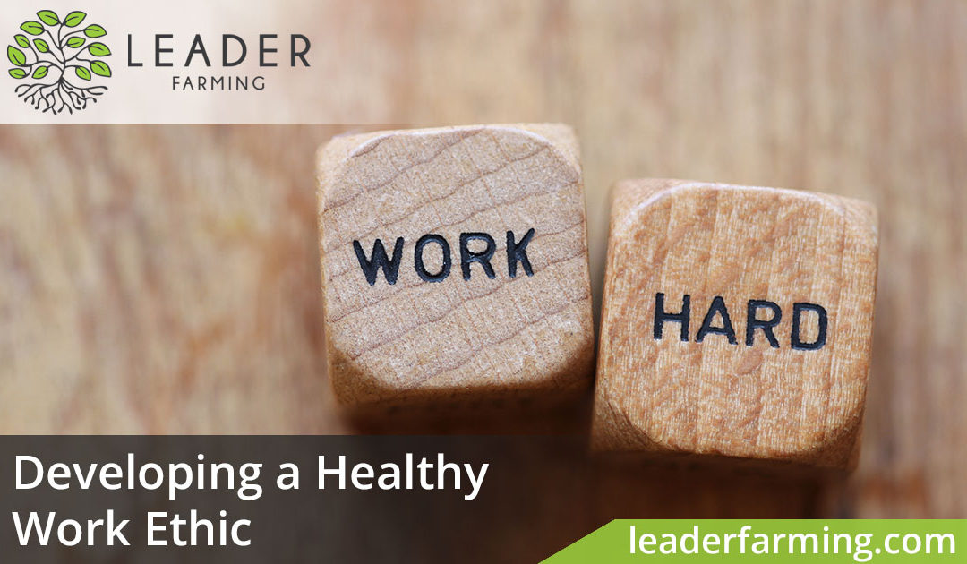 Developing a Healthy Work Ethic